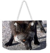 Wild Eyes Weekender Tote Bag