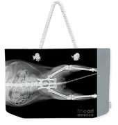 X Ray Plate Of Cat Weekender Tote Bag