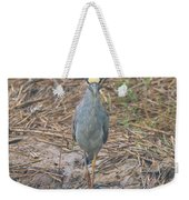 Yellow Crowned Night Heron At Tidal Creek Weekender Tote Bag