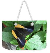 Yellow-edged Giant Owl Butterfly #6 Weekender Tote Bag