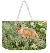 Young Red Tailed Fox Weekender Tote Bag