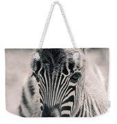 Zebra Colt In Spring Weekender Tote Bag