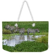 Zebras In The Swamp Weekender Tote Bag