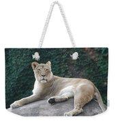 Zoo Lion Weekender Tote Bag