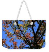 10-15-16--0777 Blue Sky # 3 Don't Drop The Crystal Ball Weekender Tote Bag