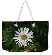 10-15-16--4996 Montauk Daisy Don't Drop The Crystal Ball Weekender Tote Bag