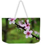 Blossoming Peach Flowers  Closeup Weekender Tote Bag