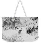 Elk In Deep Snow In The Pike National Forest Weekender Tote Bag