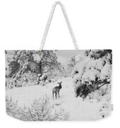 Elk In Deep Snow In The Pike National Forest Weekender Tote Bag