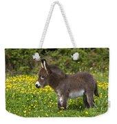 Miniature Donkey Foal Weekender Tote Bag