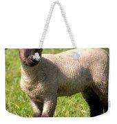 Spring Lamb Weekender Tote Bag