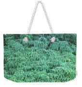 100134 Uluhe Ferns Hawaii Weekender Tote Bag