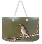 105319 - Bluebird Weekender Tote Bag