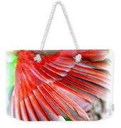 1055-001 - Northern Cardinal Weekender Tote Bag