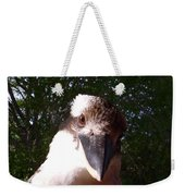 Australia - Kookaburra Looking Right At You Weekender Tote Bag