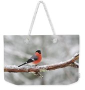 Eurasian Bullfinch In Winter Weekender Tote Bag