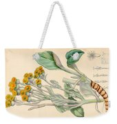 Illustrations Of The Flowering Plants And Ferns Of The Falkland Islands Weekender Tote Bag