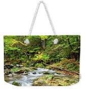 1266 Great Smoky Mountain National Park Weekender Tote Bag