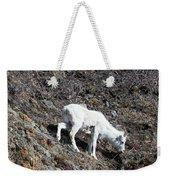Dahl Sheep, Turnigan Arm Weekender Tote Bag