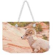 Desert Bighorn Ram Weekender Tote Bag