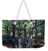 Landscape Paintings Nature Weekender Tote Bag