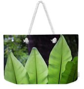 Rainforest At Foxground, Kiama Weekender Tote Bag