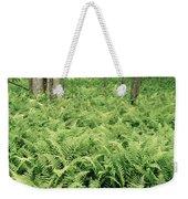146112 Ferns In Pisgah Nat Forest V Weekender Tote Bag