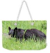 American Black Bear Yellowstone Usa Weekender Tote Bag