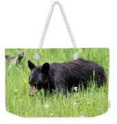 American Black Bear Yellowstone Usa Weekender Tote Bag