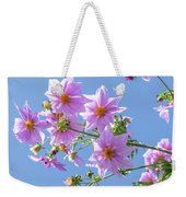 Fully Bloomed Pink Dahlia Imperialis At Garden In November Weekender Tote Bag