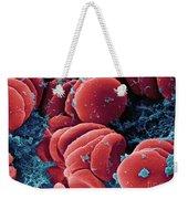 Human Red Blood Cells, Sem Weekender Tote Bag