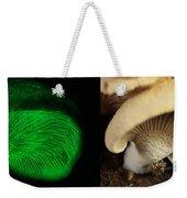 Luminescent Mushroom, Panellus Stipticus Weekender Tote Bag