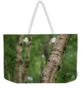 Shallow Depth Of Field Landscape Of Vibrant Bluebell Woods In Sp Weekender Tote Bag