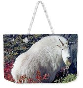 1m4900 Mountain Goat Near Mt. St. Helens Weekender Tote Bag