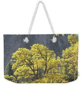 1m6610 Middle Cathedral Rock In Autumn Weekender Tote Bag