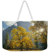 1m6611-oak Trees And Middle Cathedral Rock In Autumn Weekender Tote Bag