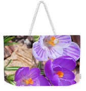 1st Flower In Garden 2010 Photo Weekender Tote Bag