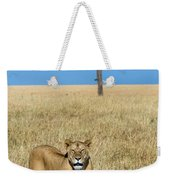 African Lioness Panthera Leo, Serengeti Weekender Tote Bag