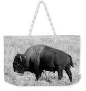 American Bison Buffalo Bull Feeding On Dry Fall Grass Weekender Tote Bag