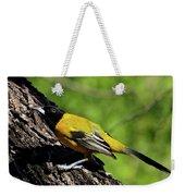 Audubon Oriole Weekender Tote Bag