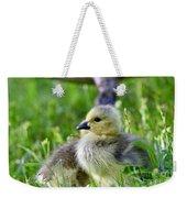 Baby Goose Chick Weekender Tote Bag