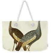 Balearica Regulorum Grey Crowned Crane, Robert Jacob Gordon, 1777 - 1786 Weekender Tote Bag