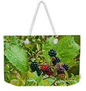 Berries In Vicente Perez Rosales National Park Near Puerto Montt-chile  Weekender Tote Bag