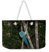 Birds From Coba Weekender Tote Bag