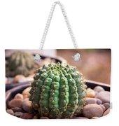 Cactus  Weekender Tote Bag