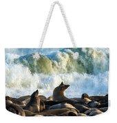 Cape Fur Seals Arctocephalus Pusillus Weekender Tote Bag