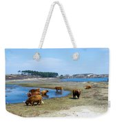Cattle Scottish Highlanders, Zuid Kennemerland, Netherlands Weekender Tote Bag