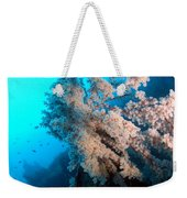2 Cherry Blossoms  Weekender Tote Bag