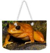 Chilean Tomato Frog Weekender Tote Bag