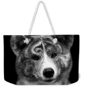 Closeup Portrait Of Akita Inu Dog On Isolated Black Background Weekender Tote Bag